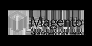 WordPress Backup Magento