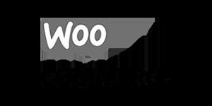 WordPress Backup woocommerce